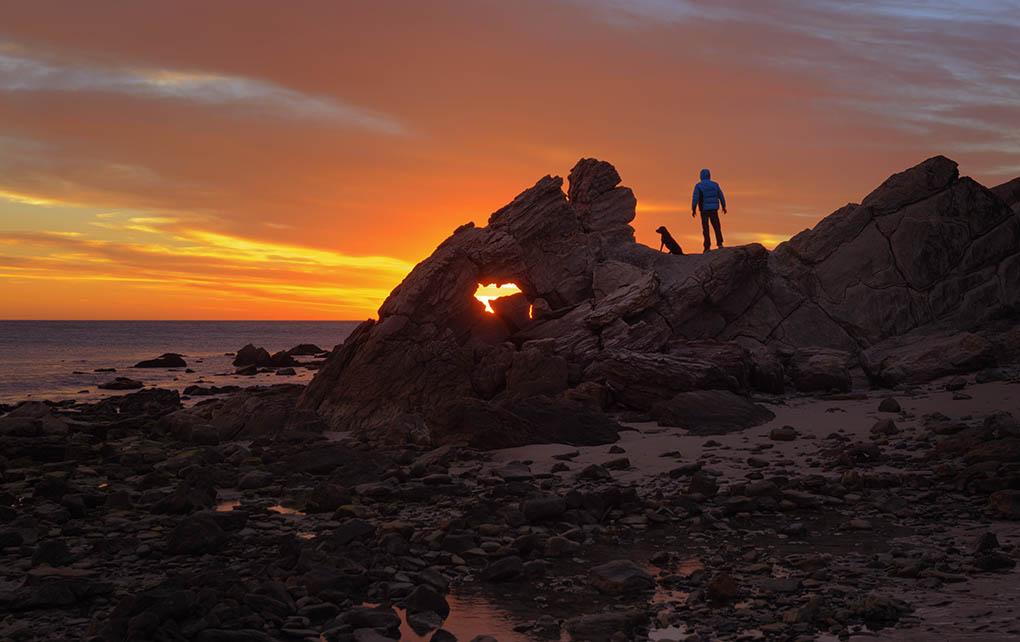 Man and dog at sunset.
