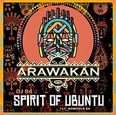 DJ 84_Spirit of Ubuntu_Album cover.jpg