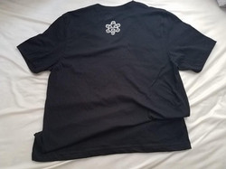 Back: Men (Large) V-Neck T-Shirt