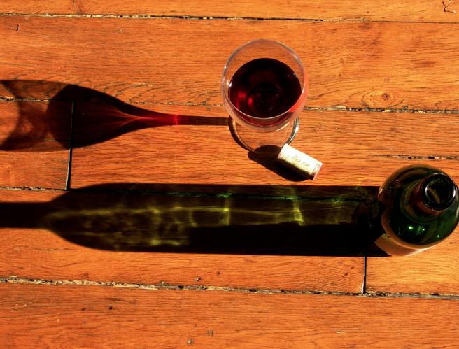 Le Dicionnaire chic du vin / Léon Mazzella