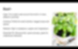 Anjelica's Herb Garden / slideshow