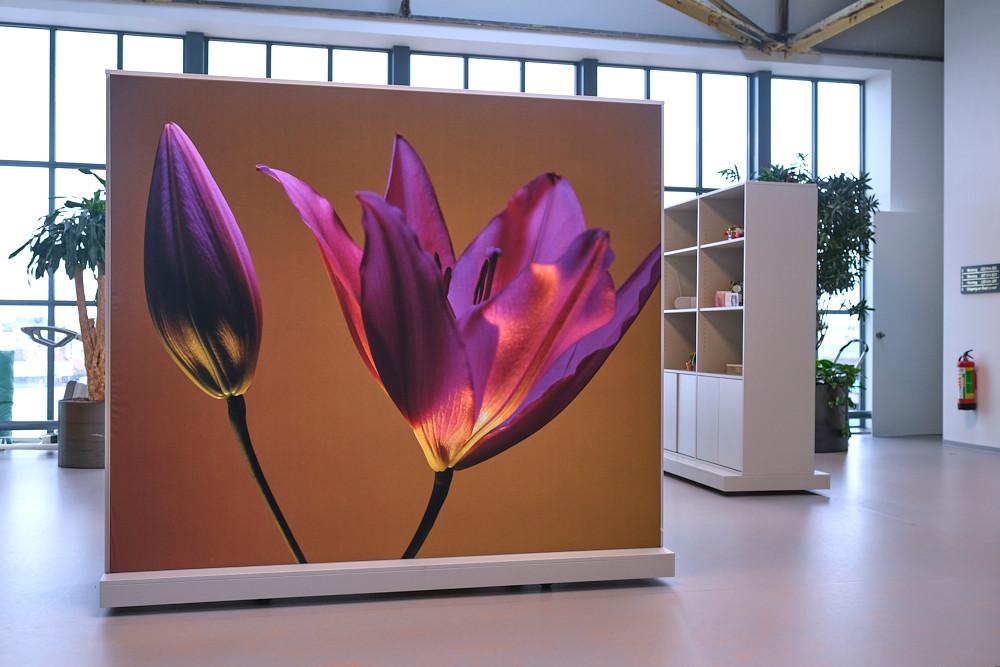 Fotografie geprint op doek voor interieur bedrijf WVO Zorg