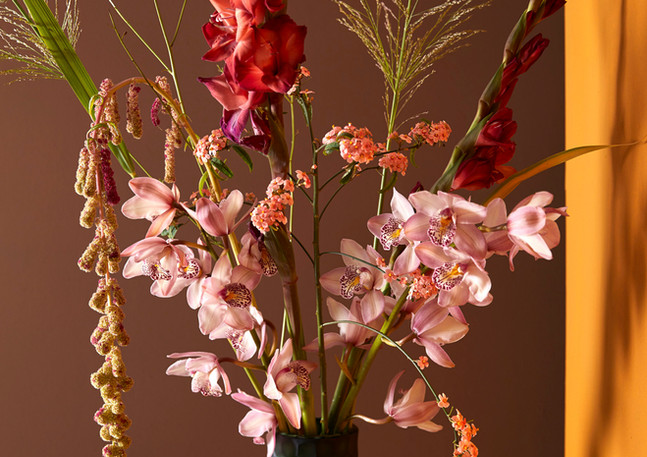 Ben van der Kooij Orchids