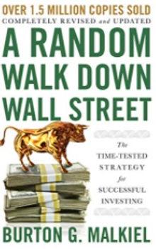 A Random Walk Down Wall Street.jpg