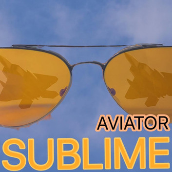 Sublime Aviator Two Fighter Jets.JPG