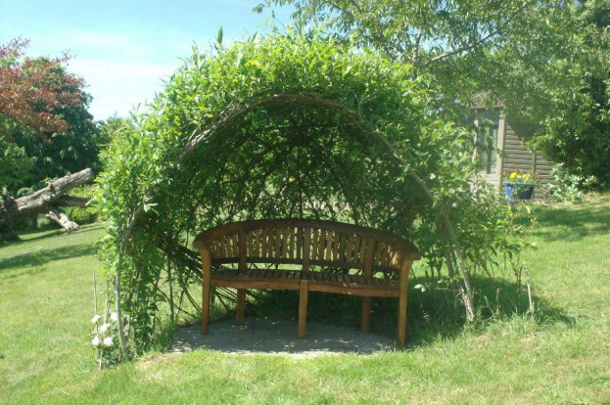 arbour and bench
