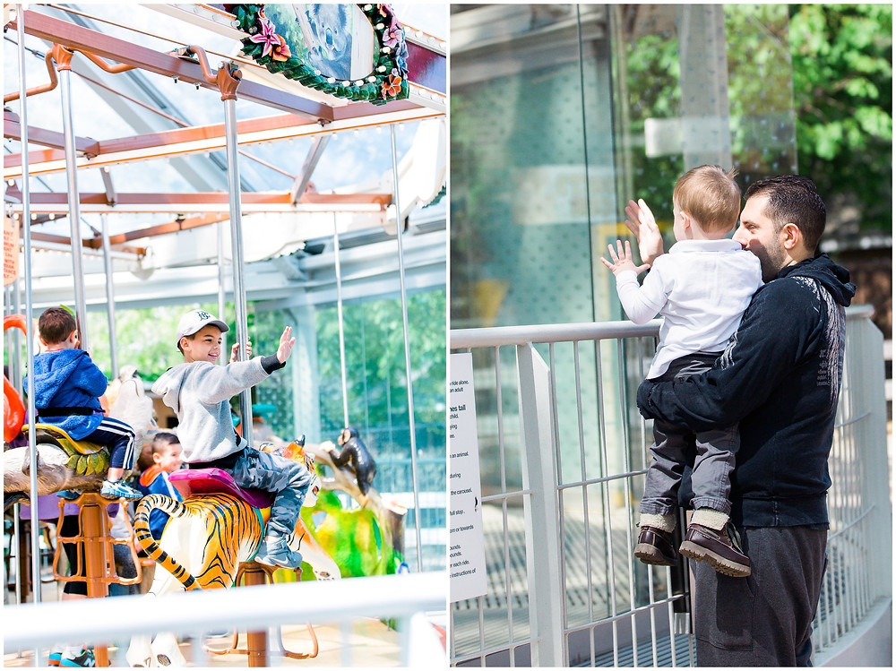 waving from carousel at zoo birthday party