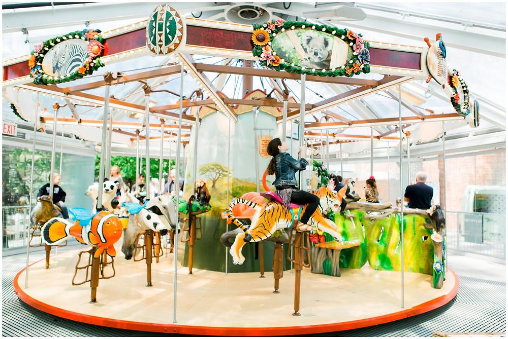 Carousel at zoo birthday party, staten island, ny