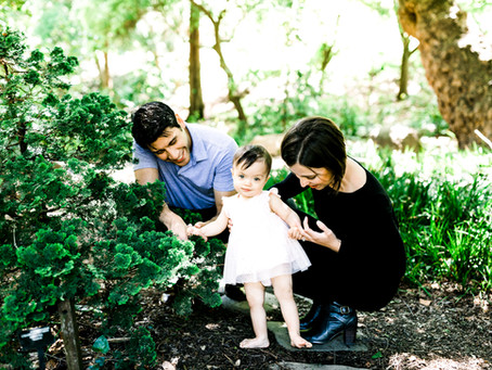 san francisco botanical garden // san francisco family photographer