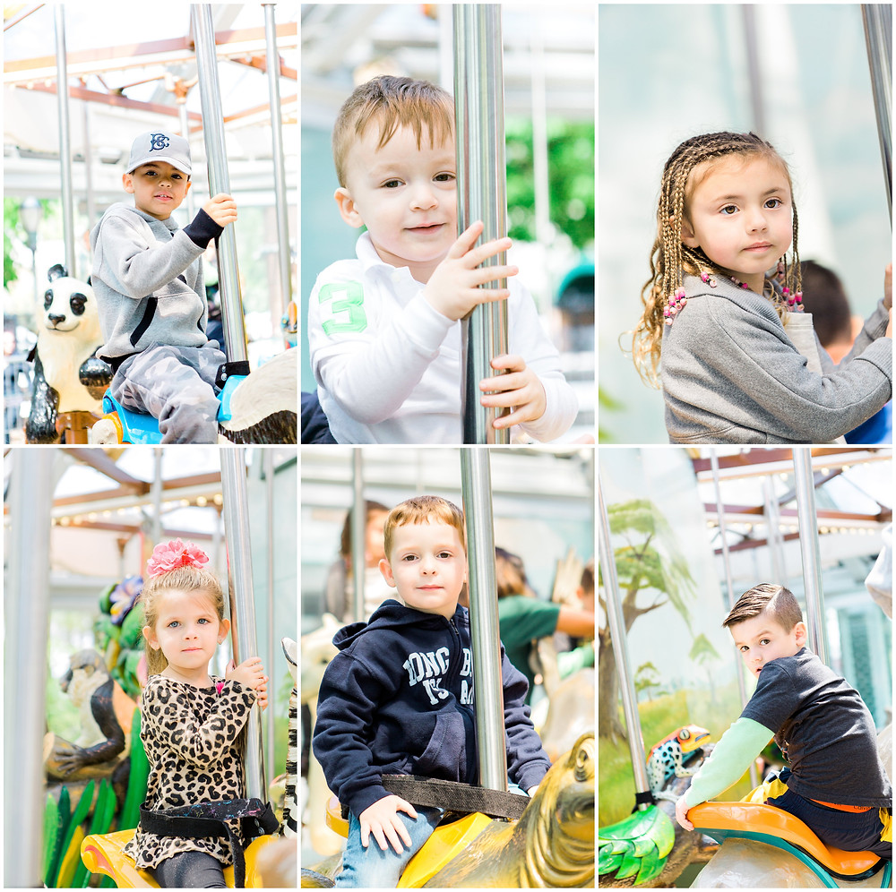 portraits of kids on carousel at zoo birthday