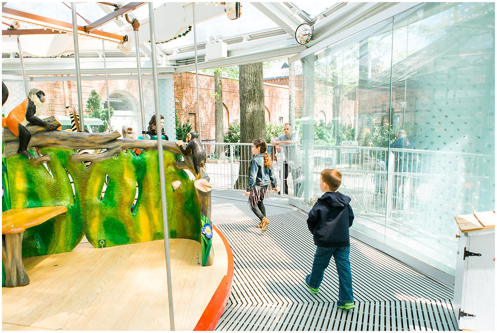 kids heading to carousel at zoo birthday