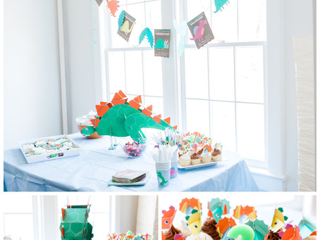 roarrr! happy 3rd birthday! | ny birthday party photographer