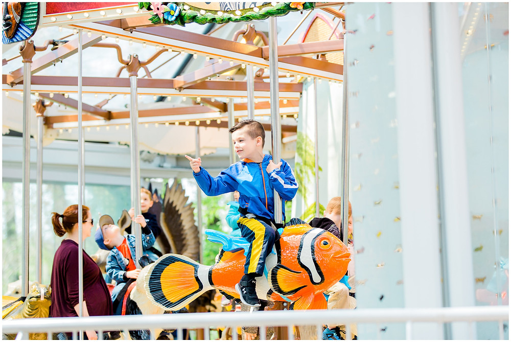 kid enjoying a rid on carousel at zoo birthday