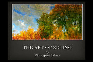 The Art of Seeing Christopher ONLINE 202