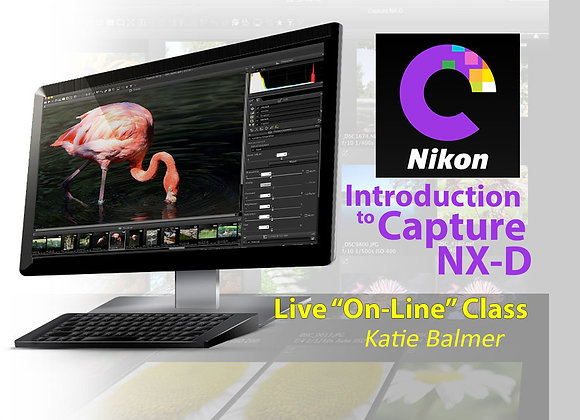 Introduction To CAPTURE NX-D SOFTWARE