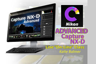Capture NX-D Advanced NO DATE 4x6 Image.