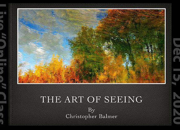 """THE ART OF SEEING - """"LIVE"""" Online Class"""