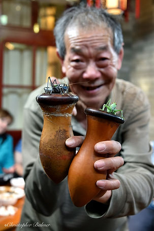 Image of man with insects by Christopher Balmer on China Photo Tour