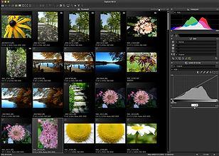 Capture-NX-D-thumbnail-view-flora.jpg