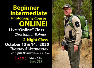 Beginner Intermediate Christopher ONLINE