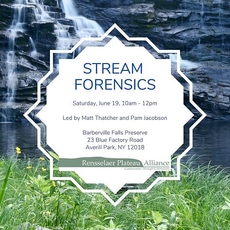 2021-06-19 Stream Forensics_no link.png