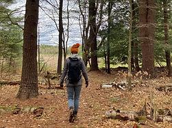 Mindful Walk_Jessica Barthel_landscape.j
