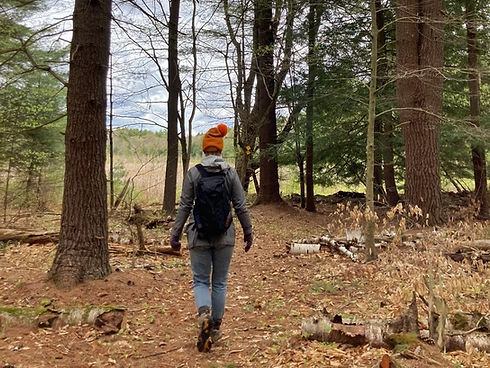 Mindful Walk_Jessica Barthel_landscape.jpeg