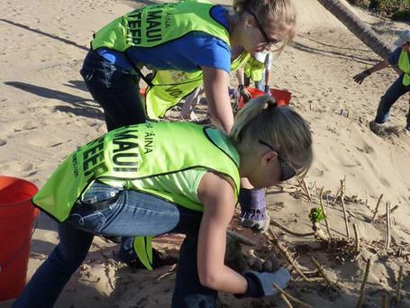 2 Short Videos:  Kihei Charter School 6th Graders Explain Dune Growth in Kihei