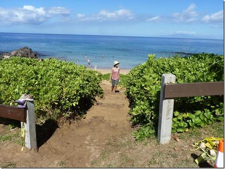 Pathways to our Beaches