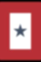 veteran servie flag