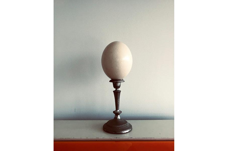 'Egg' 2018, Antwerp
