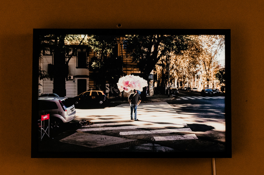 'Pink Idea' 2015, Buenos Aires