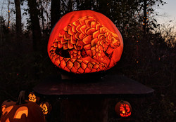 pangolin_pumpkin_carving_edited.jpg