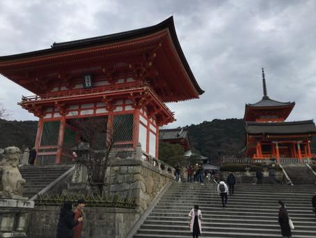 오사카 아줌마와 함께하는 느긋하고 여유로운 교토여행(단독투어)
