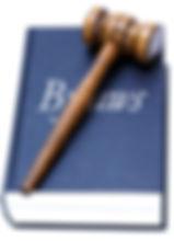 RunYourPTA_stock_bylaws.jpg
