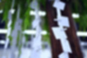BEN02797_edited.jpg
