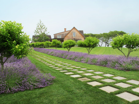 The Visual Landscaping Design, Ideas, Implementation