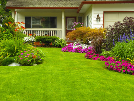 Landscaping Services by Turf Plus Management