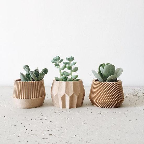 Geometric Mini Planters - Set of 3