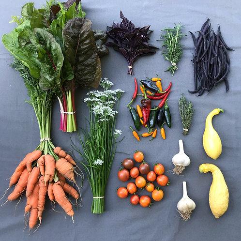 Mini Harvest Box - #10