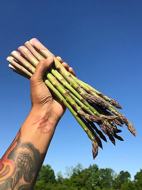 Asparagus - 10 lb. Bulk