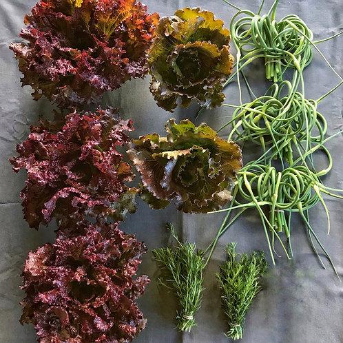 Seasonal Harvest Box 1 - $20