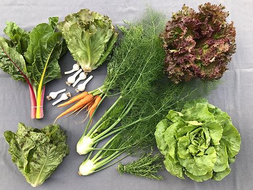Mini Harvest Box - #3