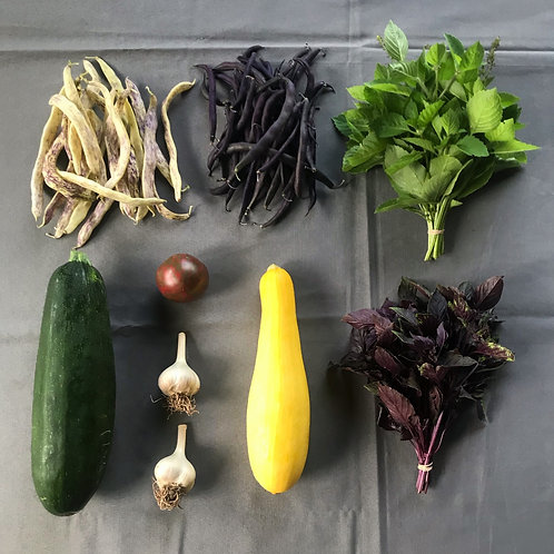Seasonal Harvest Box # 10 - $20
