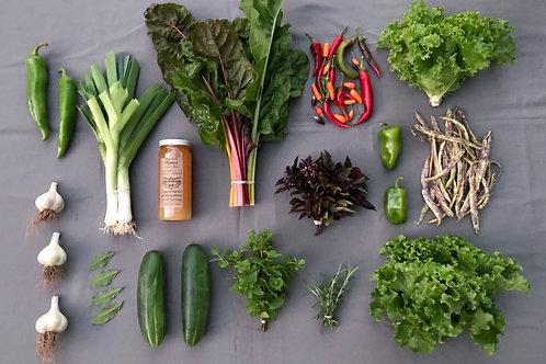 Seasonal Harvest Box - #11