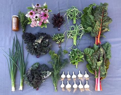 Seasonal Harvest Box # 8 - $50