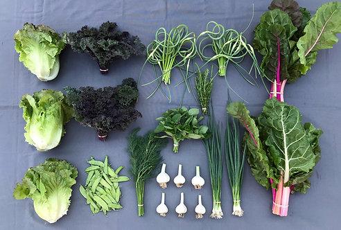 Seasonal Harvest Box # 7 - $35