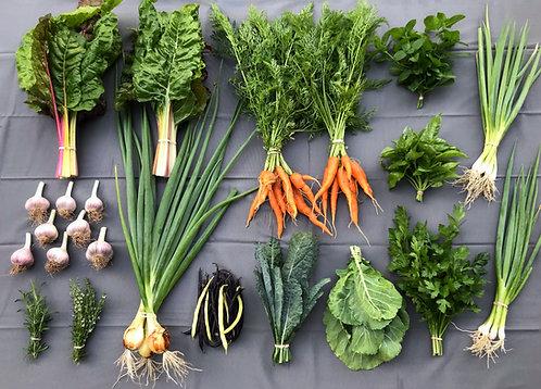 Seasonal Harvest Box - #5
