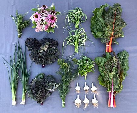 Seasonal Harvest Box # 8 - $35