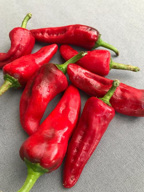 Chimayo Pepper